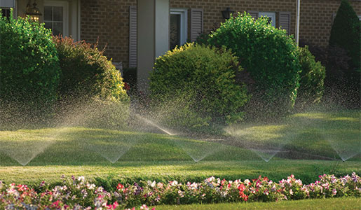watering_and_irrigation_045-wide
