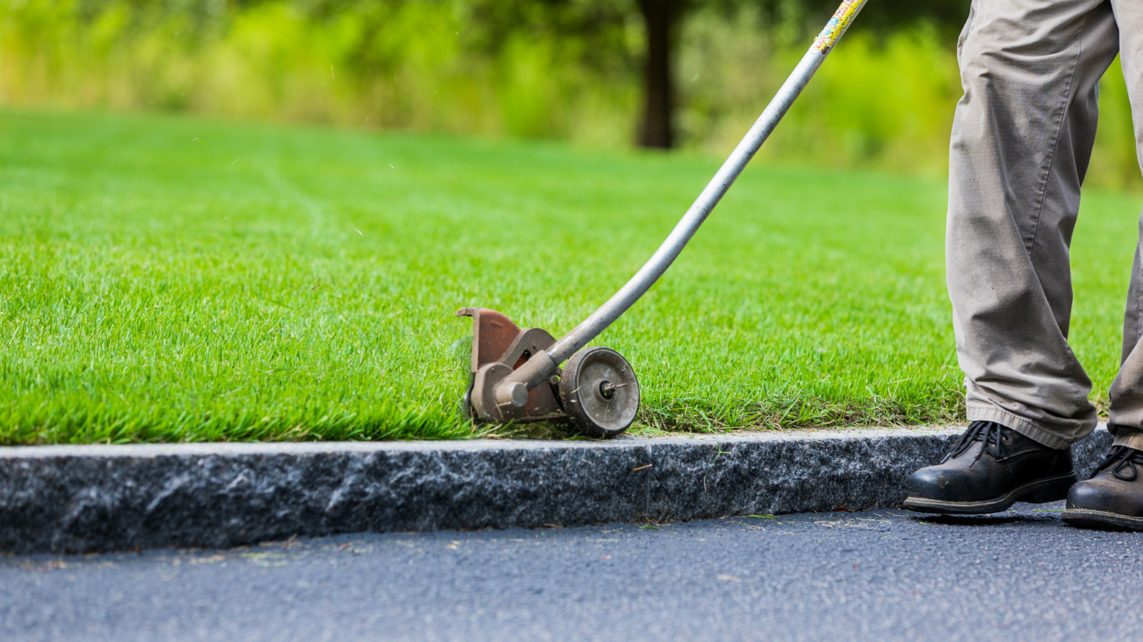 Lawn Maintenance Services in South Carolina 7