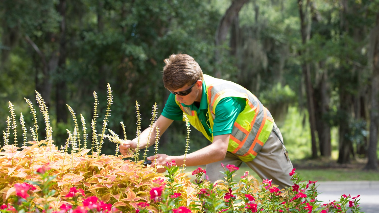 Commercial-Landscaping-and-Flowers